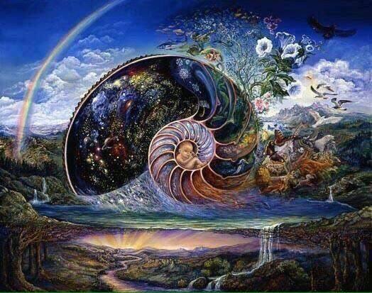 shell-of-life