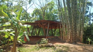 Yoga Deck in the rainforest