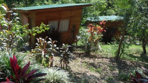 Diamante Center Private cabins jungle garden